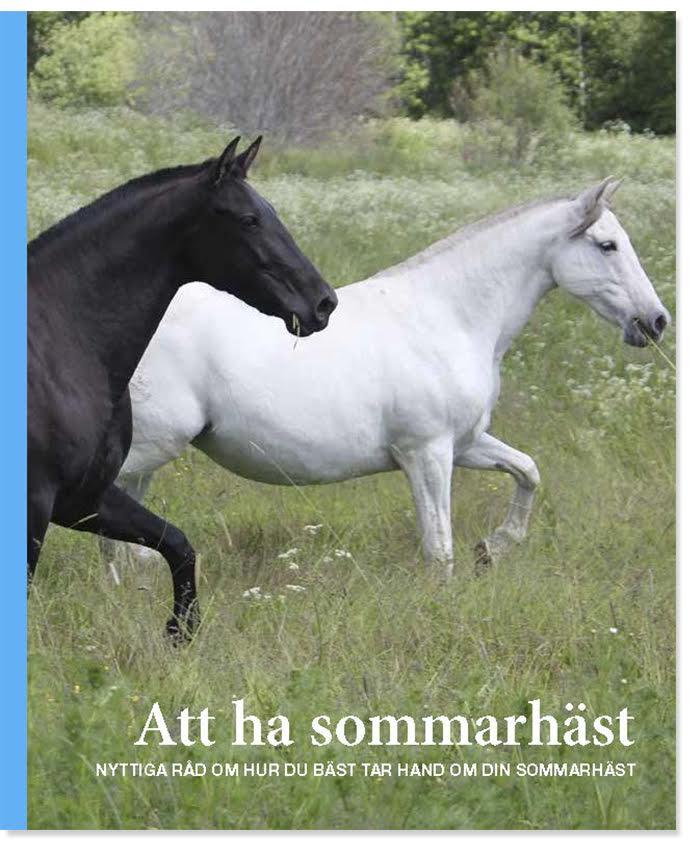 Att ha sommarhäst